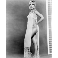 Sharon Tate Photo